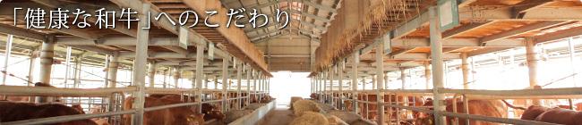 「健康な和牛」へのこだわり